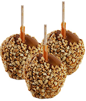 Caramel Apple Dip, Caramel Apples, Apple Dip Warmers, Apple Dip Sticks, Granulated Peanuts for Caramel Apples, and Caramel Apple Bags